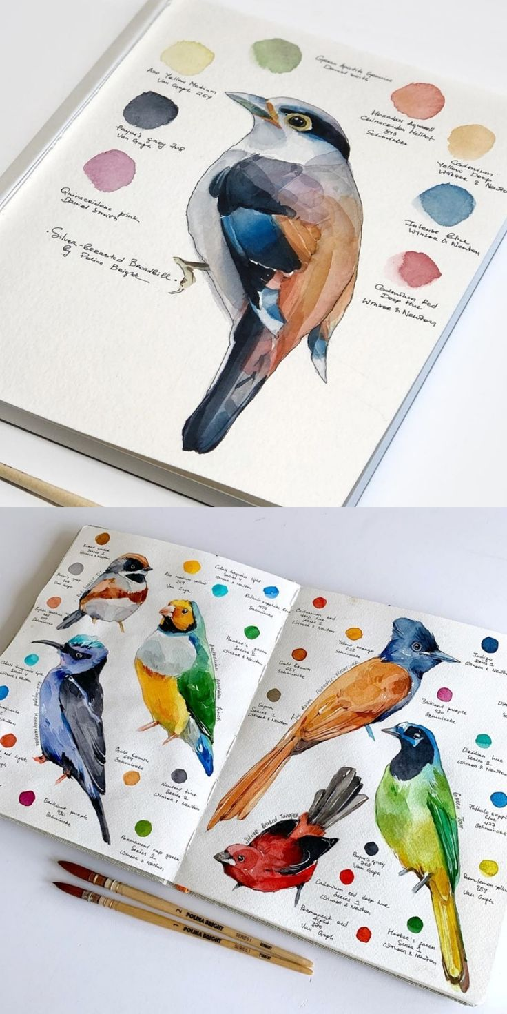 Etsy Store Function on So Tremendous Superior #etsy #watercolor #birds #illustration #ar…