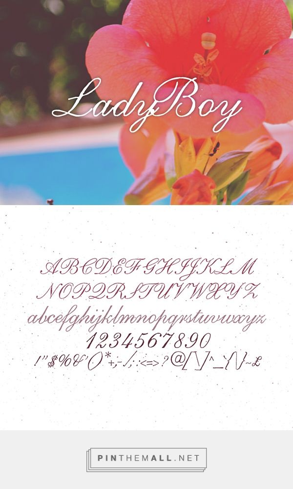 New Functional Free Fonts for Designers | LadyBoy Free Font | Graphic Design Junction - created via https://pinthemall.net