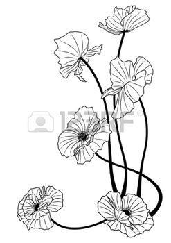 tatouage art nouveau: les coquelicots en couleurs noir et blancs. Illustration