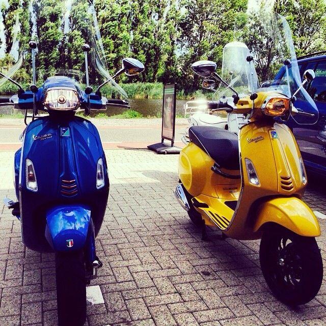 Blue & Yellow Sprint