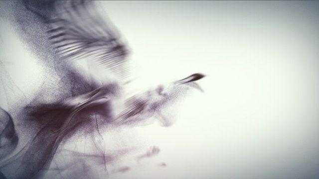 http://www.Troublemakers.tv  Making Of https://vimeo.com/45206187  Title: Ink       Length: 60 Sec       Client: CCTV - Central China Television       Agency: MMIA      Creative Director: Zhou Jiahong       Art Director: Wu Hao       Copywriters: Zhou Jiahong, Sophia Xu       Storyboard: Wu Hao, Liang Yuanchun       Production Company: www.Troublemakers.tv & weareflink      Director: Niko Tziopanos       Producer - ...