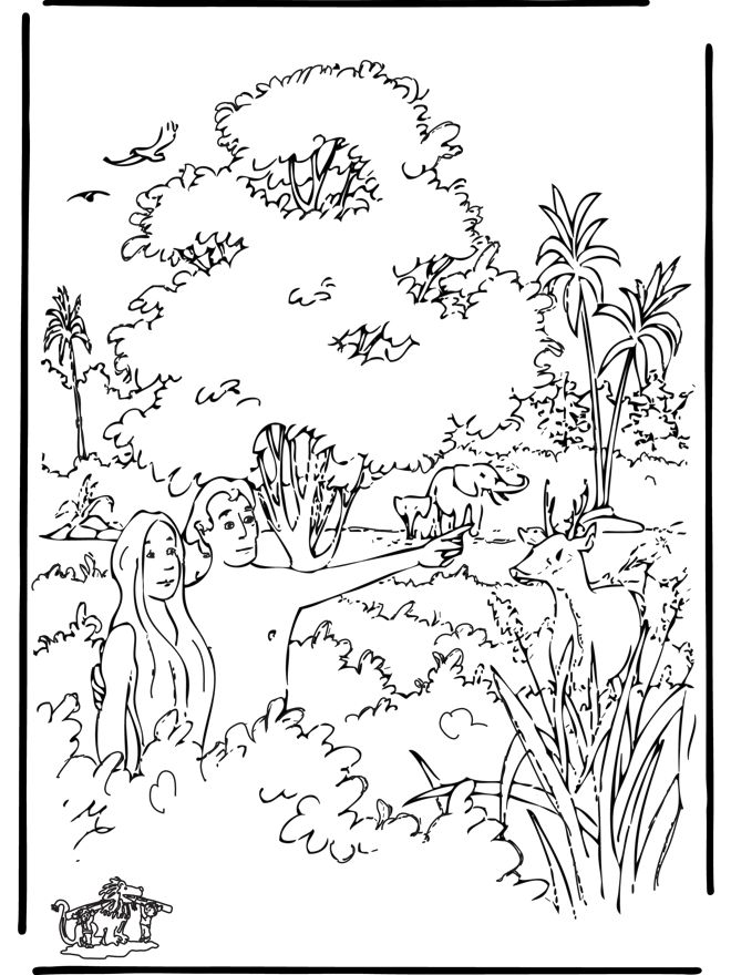 Creation coloring page sunday school pinterest for Coloring pages of creation