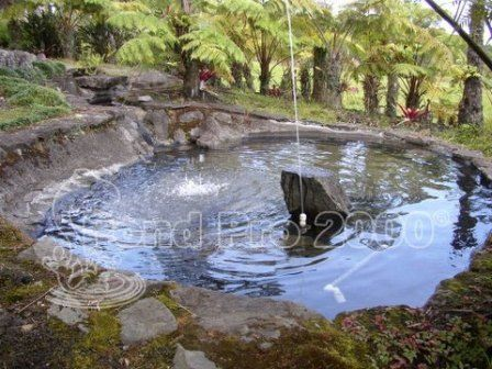 81 best epdm pond liners images on pinterest fish ponds for Best koi pond liner