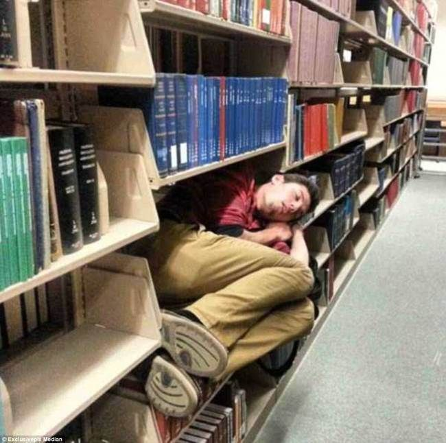 11 Humans Who Are Mastering The Sleeping Art