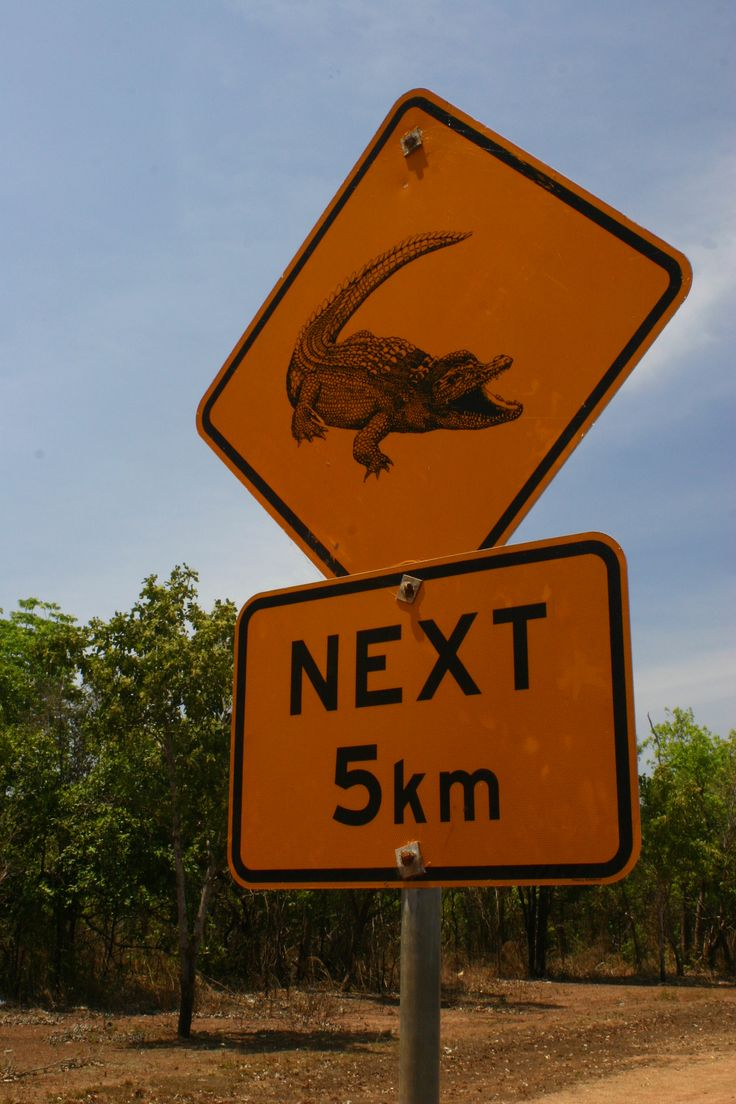 Watch out for crocs in the Top End!