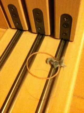 引き戸のレールのホコリ 輪ゴム置いて開け閉めで簡単にとる