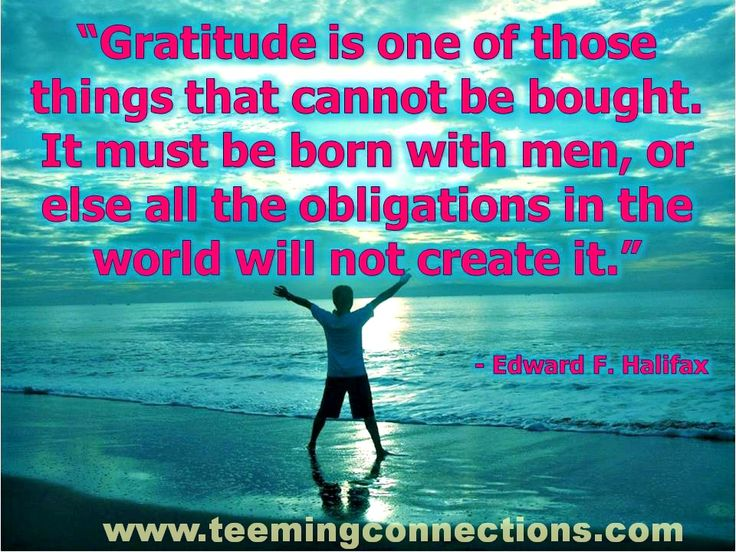 """""""Gratitude is one of those things that cannot be bought. It must be born with men, or else all the obligations in the world will not create it."""" - Edward F. Halifax #teemingconnections"""