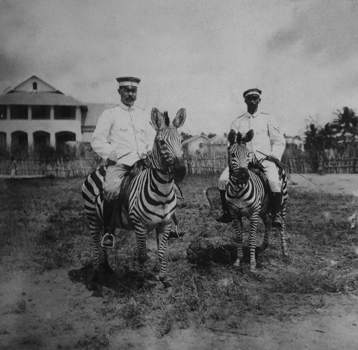 First World War: German colonial officials on zebras. Dar-es-Salaam, German East Africa (1914) [1600x1569]