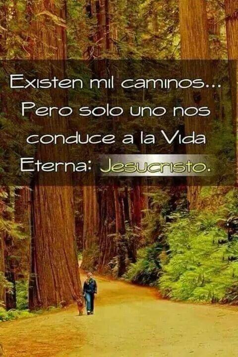 Juan 14:6 Jesús le dijo: Yo soy el camino, y la verdad, y la vida; nadie viene al Padre, sino por mí.♔