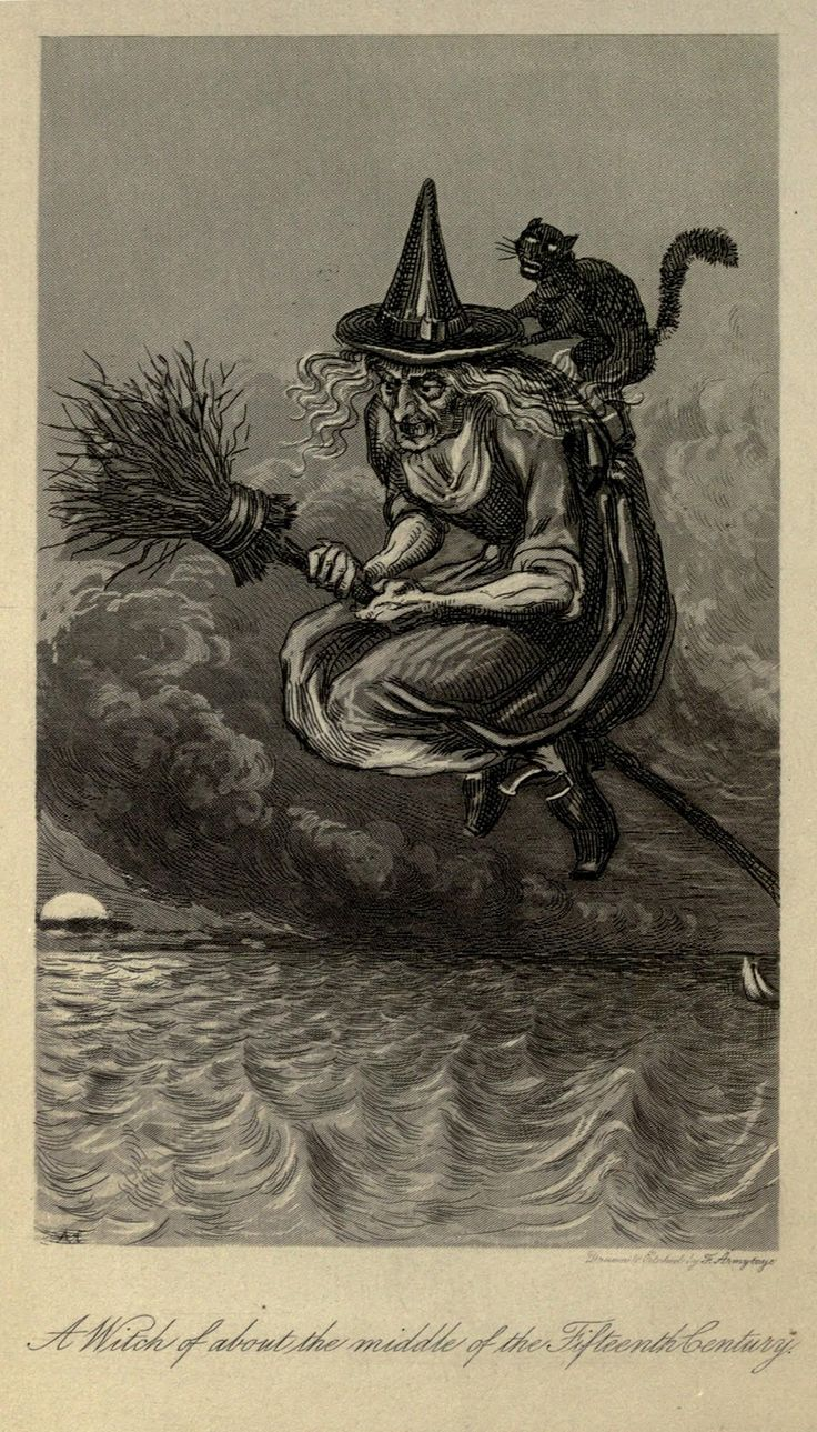 Vintage Ephemera: Book illustration, Old fashioned witch on broom with black cat, C. 1800's
