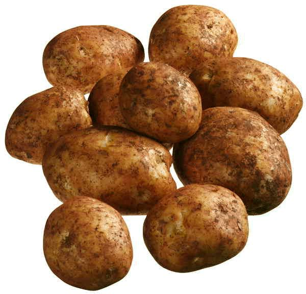 Brushed Potatoes Brushed Potatoes are a cold weather crop. The best areas in Victoria for growing potatoes are around Ballarat, Geelong and Gippsland. The best practice for choosing brushed potatoes are to choose the potatoes that are firm and fr