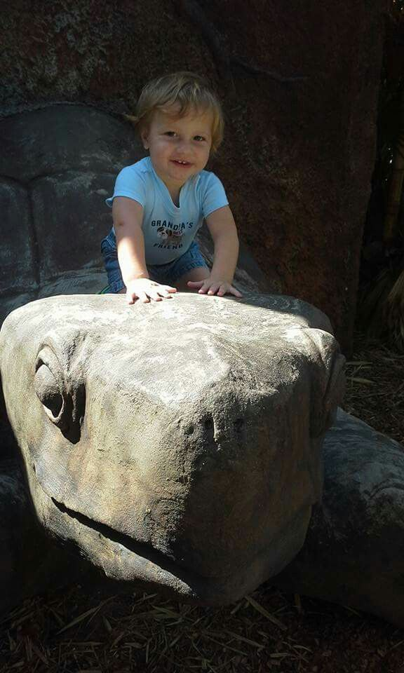 Riding a giant sea turtle (concrete turtle) at the zoo.