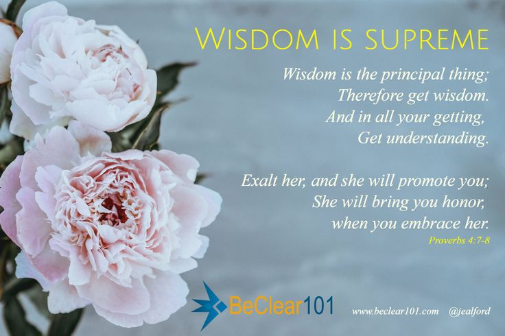 Wisdom is supreme / Wisdom is the principal thing; Therefore get wisdom. And in all your getting,  Get understanding.  Exalt her, and she will promote you; She will bring you honor,  when you embrace her. / Proverbs 4:7-8 / www.beclear101.com    @jealford