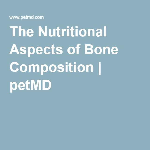 The Nutritional Aspects of Bone Composition   petMD