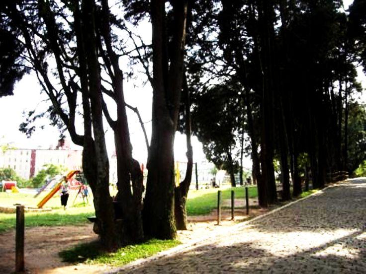 Infraestrutura: O Parque Raul Seixas possui quadras poliesportivas, quiosques, paraciclo, sanitários, aparelhos de ginástica, lago, nascente, quadra de bocha e playgrounds, Casa de Cultura. Funcionamento: Diariamente, das 6h às 18h. Tel.: (11) 2527-4142