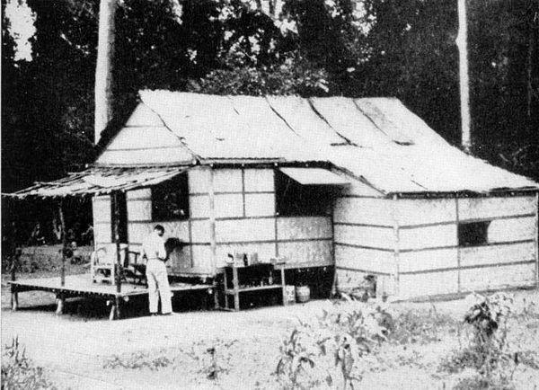A shelter near Bataan Field, 1942