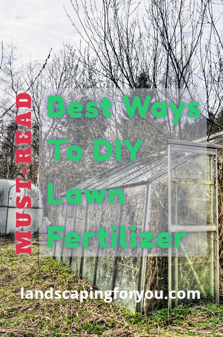 The Biggest Issues With Lawn Fertilizers Is The Chemical Used The Simple Solution Is To Make Some Natural Way Lawn F In 2020 Lawn Fertilizers Lawn Fertilizer Diy Lawn