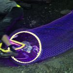 Light Cycles: Bicycle Wheels Rigged with LEDs Create Tron-Like Light Trails