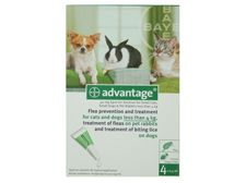 Advantage 40 mg Spot-On Solution for Small Cats, Small Dogs and Pet Rabbits (up tp 4kg