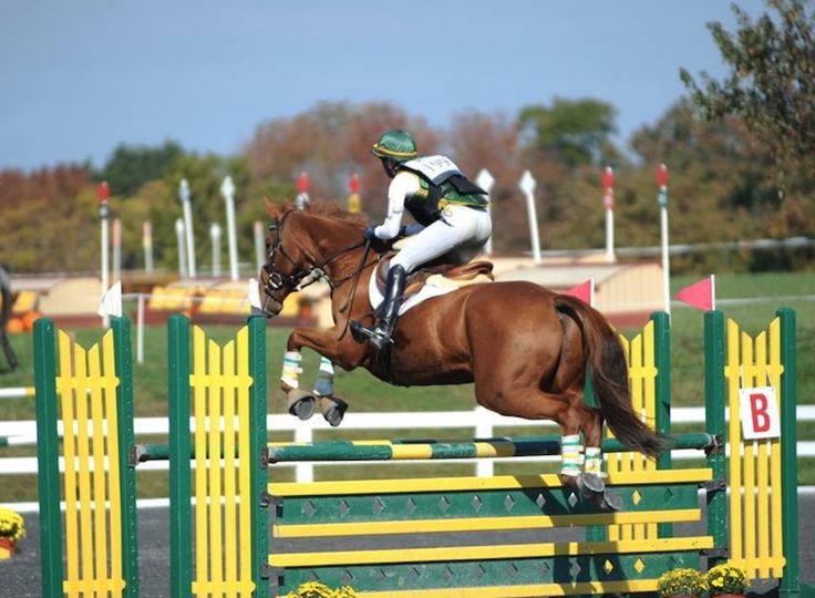 Eventing Connect writer, Lila Gendal, shares valuable advice on how riders can overcome their self-doubt and improve their riding...