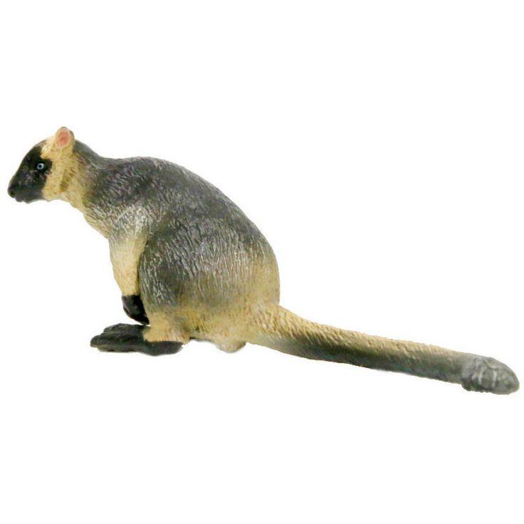 Southlands Lumholtzs Tree Kangaroo Male | Worldwide shipping www.minizoo.com.au