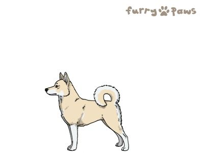 Furry Paws // WCT Kip's Malin Be Stalin' [Lla 3STM 12HH 1.412] 10.1 *BoB*x9's Kennel
