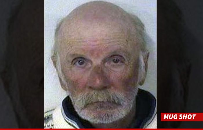 Heidi Montag's Dad Arrested for Child Sexual Abuse and Incest