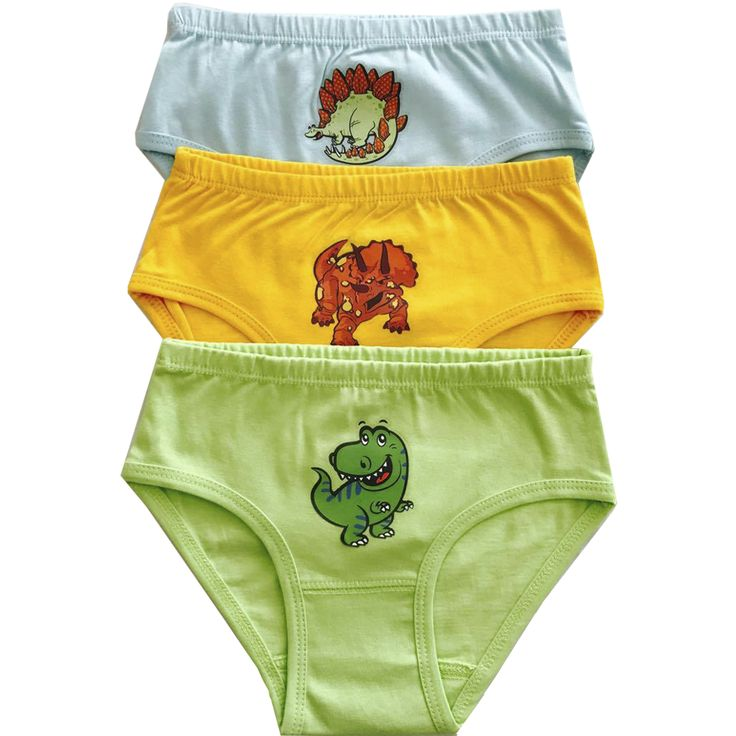 Dinosaurs Organic Cotton Underwear – 6-Pack
