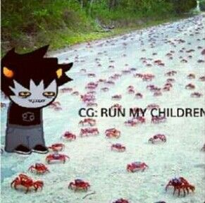 OMG THIS IS ONE OF THE FUNNIEST THINGS I HAVE EVER SEEN WITH KARKAT!