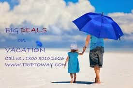 Are you planning for a holiday trip?? You should to know information about Goa to New Delhi Flight Schedule before Air tickets Reservation. Go TripToWay.com which is the professional and stablest travel company in india.