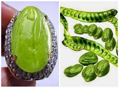 foto lucu Batu Cincin yg Enak di Makan