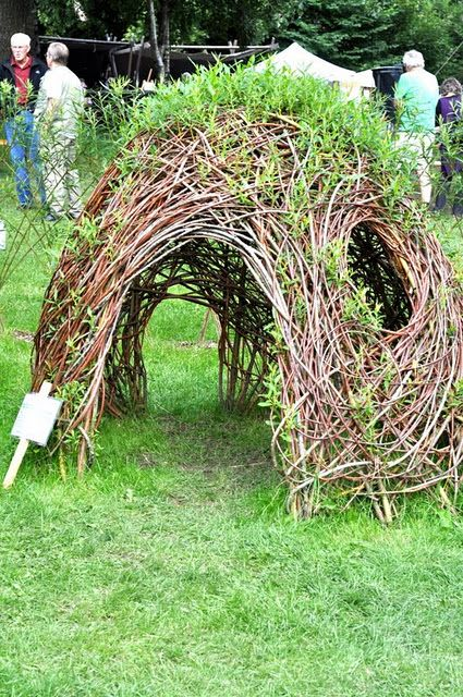 Willow branches were used to make this play house and they rooted and started to produce leaves