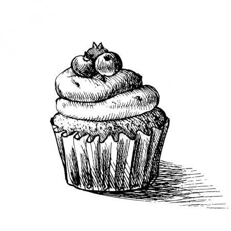 Letöltés - Vektor-fekete-fehér illusztráció aranyos krémes édes cupcake, áfonya vázolja fel. üdvözlőlapok és meghívók is használható — Stock Illusztráció #130072696