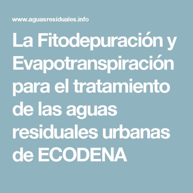 La Fitodepuración y Evapotranspiración para el tratamiento de las aguas residuales urbanas de ECODENA