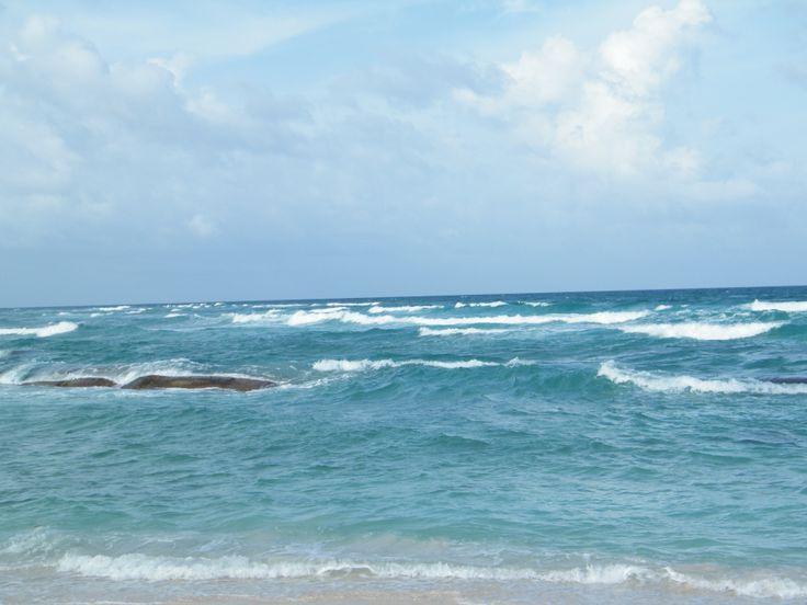 Love this beach