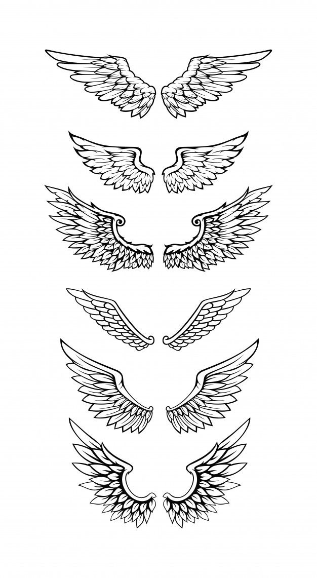 Illustration Of Wings Collection Set In 2020 Wing Neck Tattoo Wings Tattoo Wing Tattoo Men
