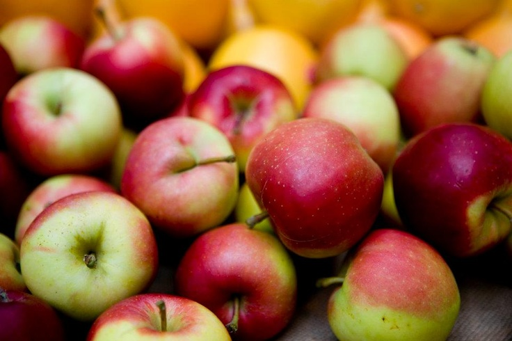 Autumn apples from Chegworth Valley