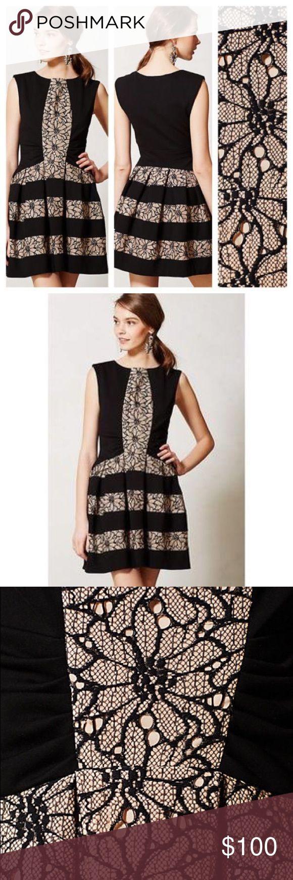 Eva Franco (Anthropologie) Laced Strata Dress Worn once to a wedding Eva Franco Dresses Midi