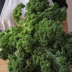 Grünkohl zubereiten_featured