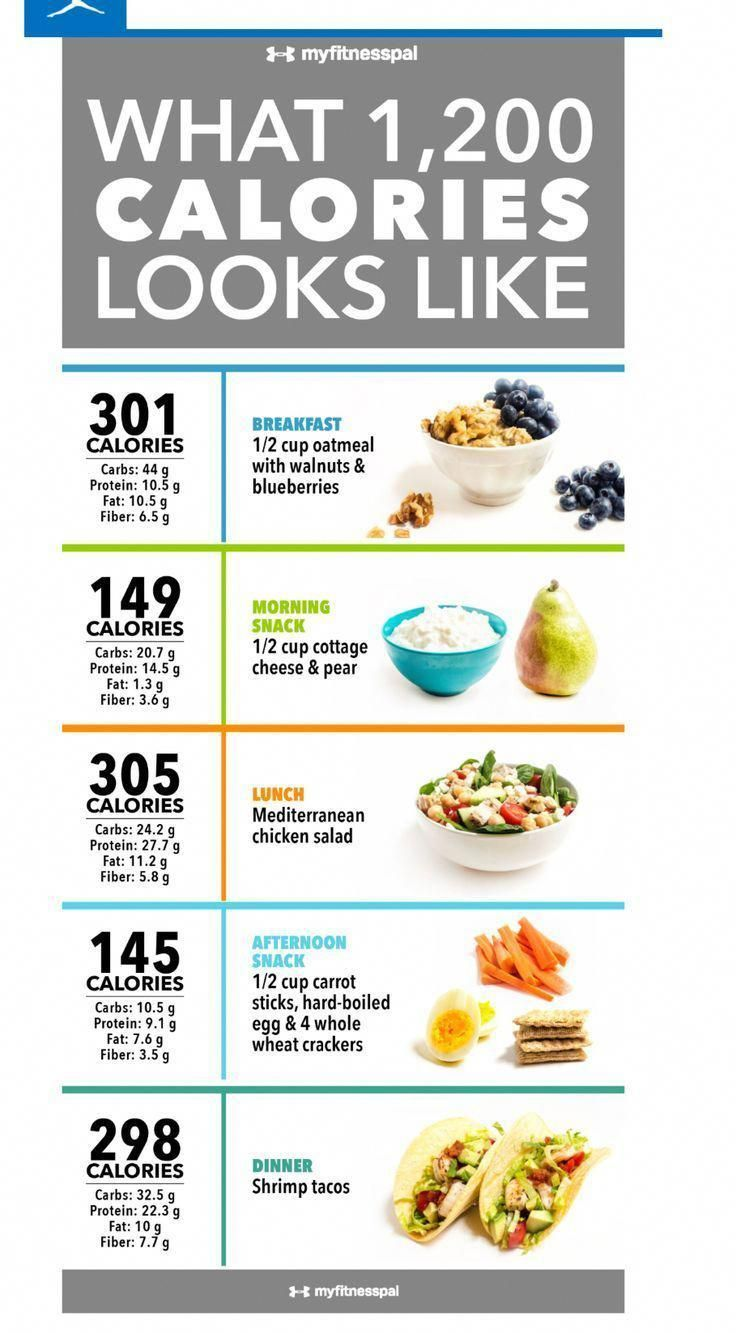 calorie diet in a day