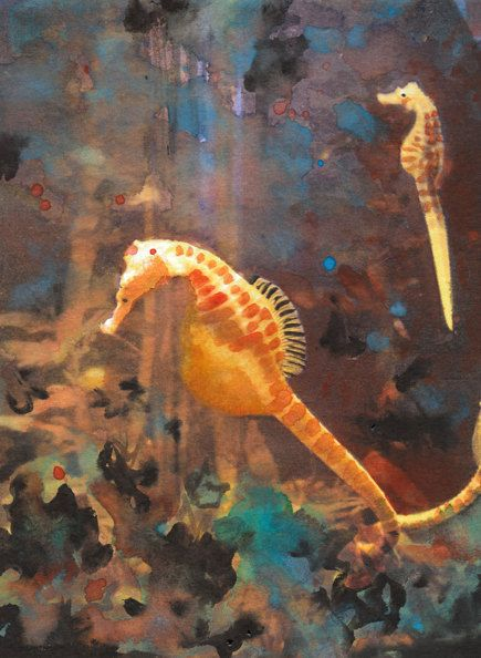 511 best sea horse art images on pinterest seahorses for Is a seahorse a fish