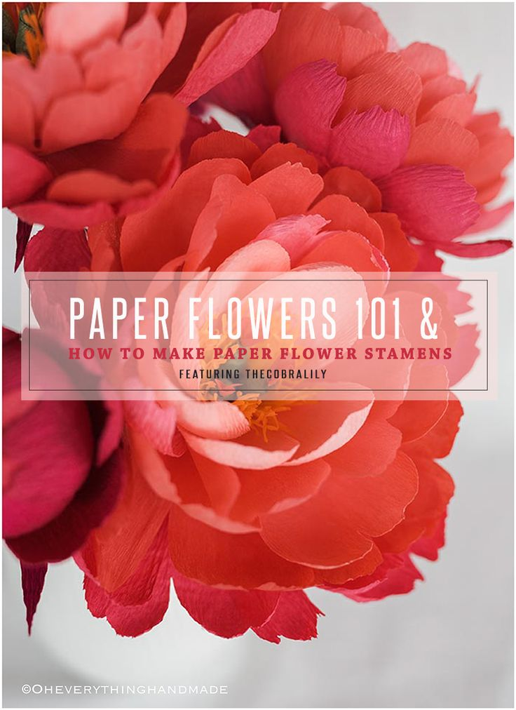 Hi, everyone and welcome to Paper Flowers 101 & How to Make Paper Flower Stamens. If you missed my previous paper flower features, click here to catch up on all the...