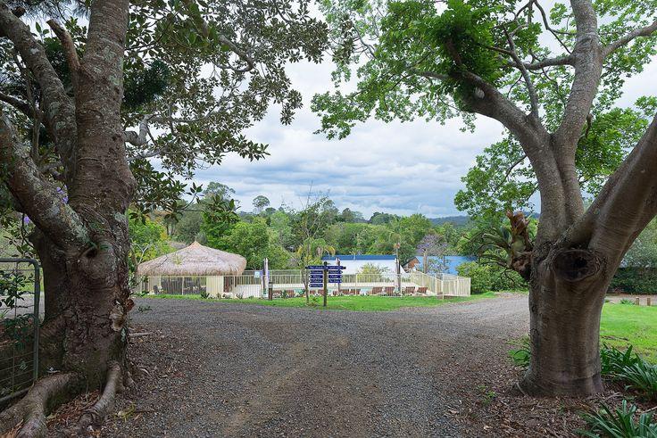 Jacaranda Cottages, Maleny.  Pet friendly accommodation