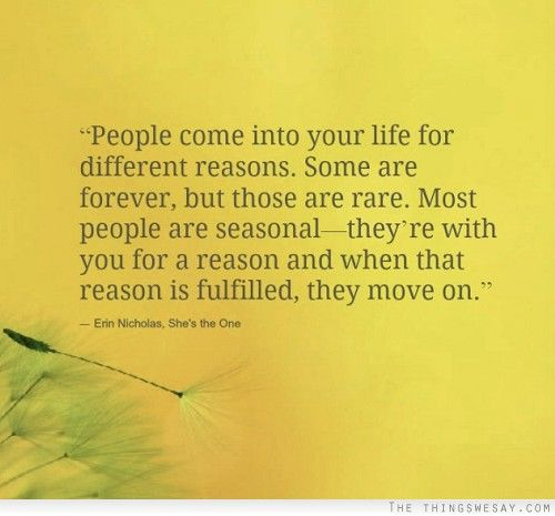 People Reason Season Lifetime Daily Inspiration Quotes