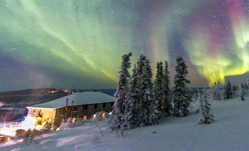 Mount Aurora Lodge - Hotels.com - Deals & Discounts for Hotel Reservations from Luxury Hotels to Budget Accommodations