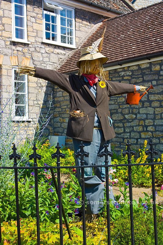 images of garden scarecrows   Garden Scarecrow   Somerset Photos / Beautiful photographs of Somerset ...