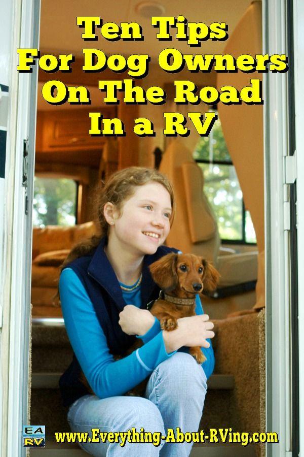 Ten Tips For Dog Owners On The Road In A RV: Taking a RV trip with your pooch
