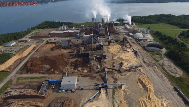 Residents learn that Northern Pulp mill in N.S. again over pollution limits