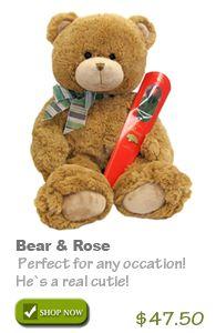 Teddy Bear & Free Chocolate Rose