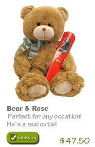 Teddy Bear & Free Chocolate Rose